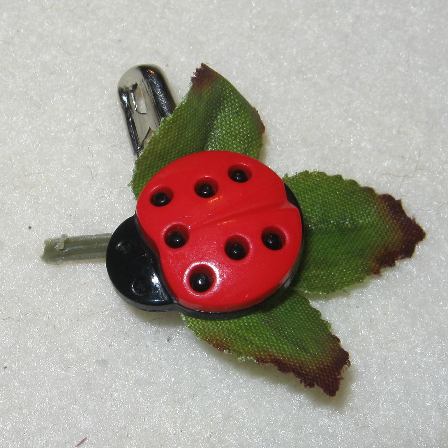 Ladybug Swap