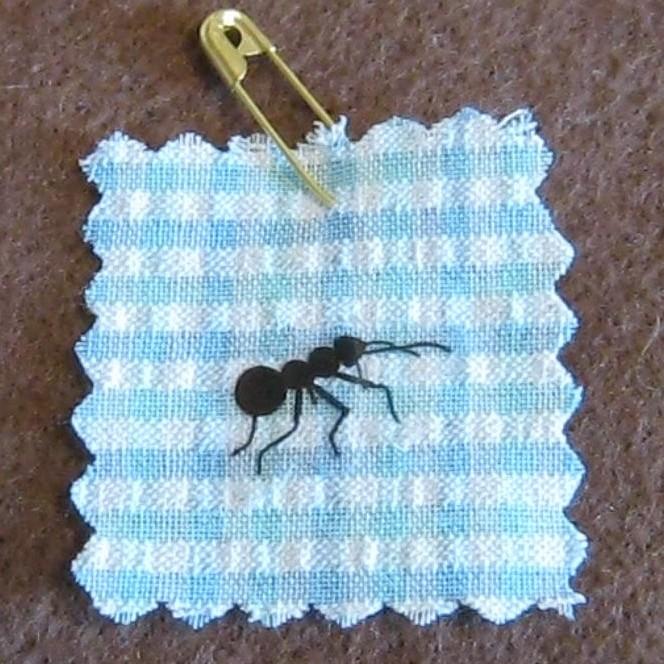 Ant Swap